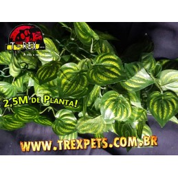 Planta Artificial 2,5m - Era GREEN