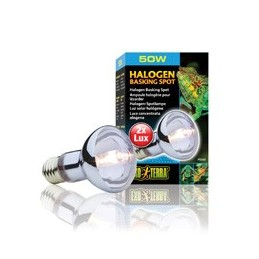 SunGlo Halogen