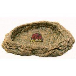 African Rock II Répteis | Iguana | Jabuti | Corn Snake