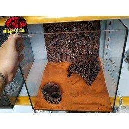 Terrário  |Leopard Gecko | Pogona Baby | Aranhas | Répteis