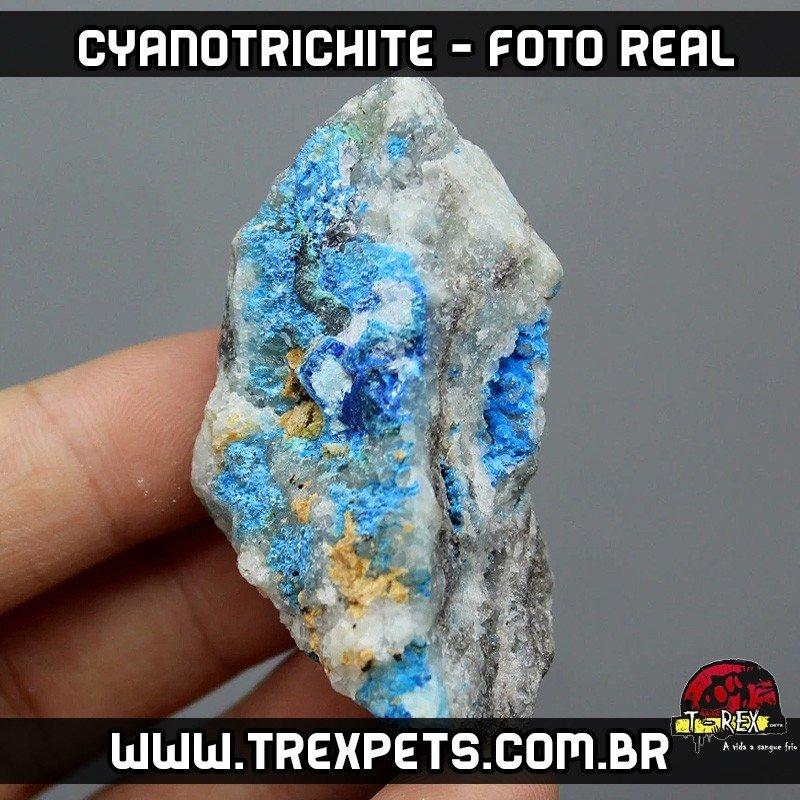 venda de pedras naturais Cyanotrichite