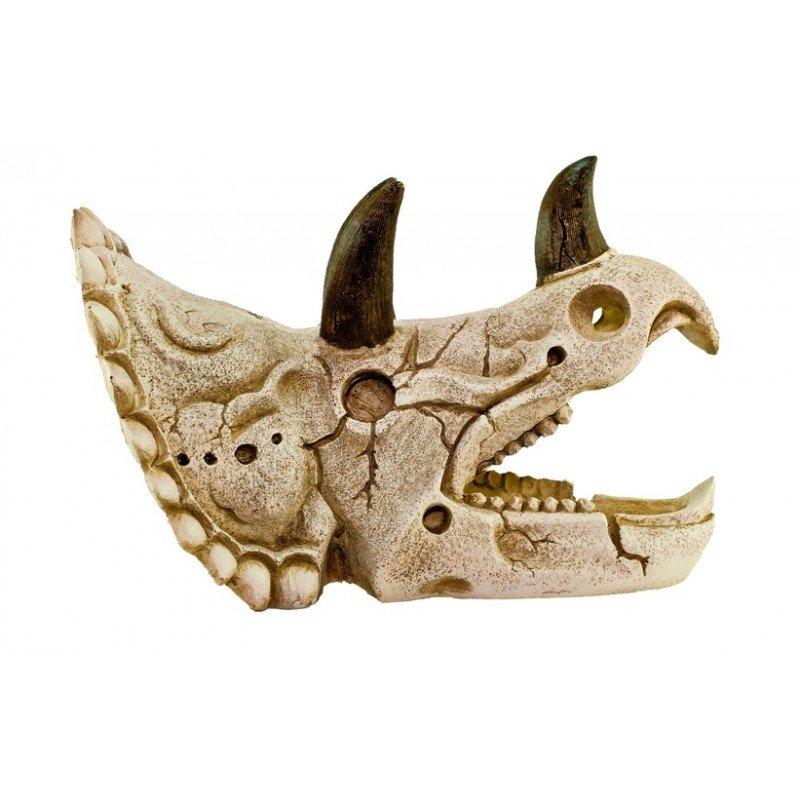 Crânio Triceratops GD