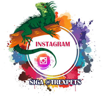 Instagram Trexpets